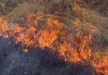 Под Волгоградом при пожаре погиб молодой мужчина