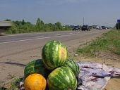 В Волгоградской области ужесточен контроль за несанкционированной торговлей