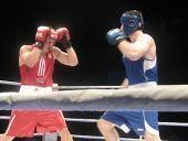 В Волгограде пройдет турнир по боксу