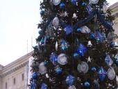Волгоградские школьники побывали на губернаторской елке