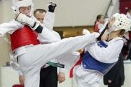 Волгоградские тхэквондисты  на Первенстве России завоевали более 20 медалей
