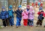 Проект «Детские сады — детям» делает первые шаги
