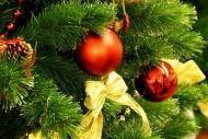 Единороссы участвуют в новогодних благотворительных мероприятиях