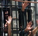 В Волгограде заключенные-мусульмане попросили говядины