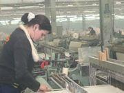 В Камышине появится текстильный кластер