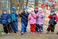 Волгоградки продолжают борьбу за места в детсадах