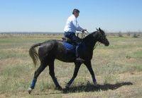 Сергей Боженов сел на коня