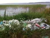 Глав районов Волгограда штрафуют за мусор
