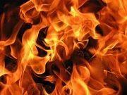 Восьми районам Волгоградской области угрожают пожары