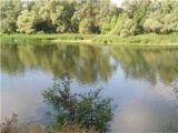 88 человек утонули на волгоградских водоемах