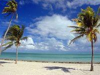 Чиновники и депутаты предпочитают Майами