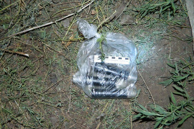 Житель Николаевска хранил у себя дома подозрительные предметы