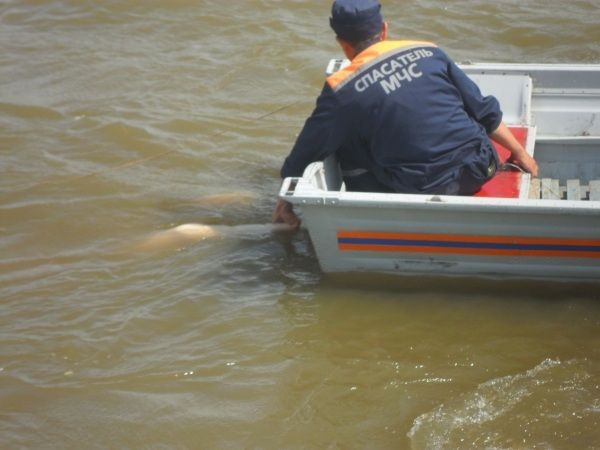 Спасатели вызволили из воды товарищей на доске и девушку на байдарке