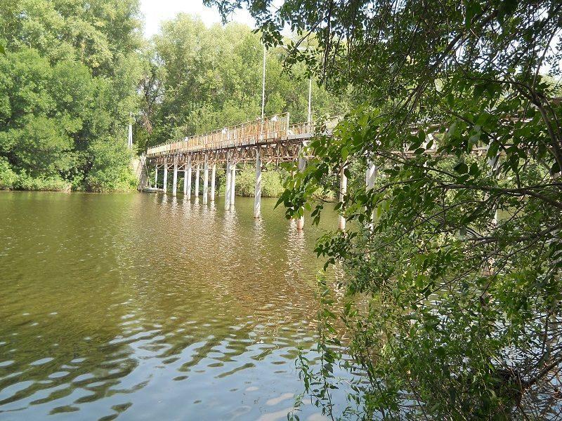 Чиновникам Волгоградской области запретили сокращать границы Волго-Ахтубинской поймы
