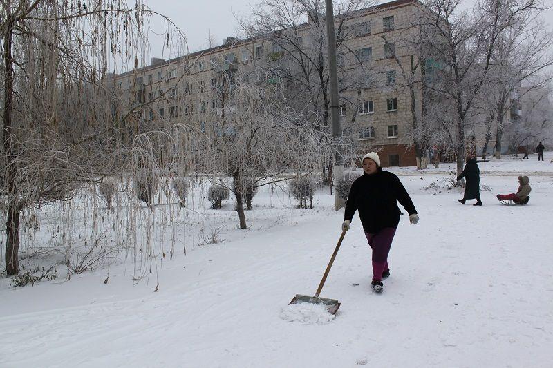 sneg 10
