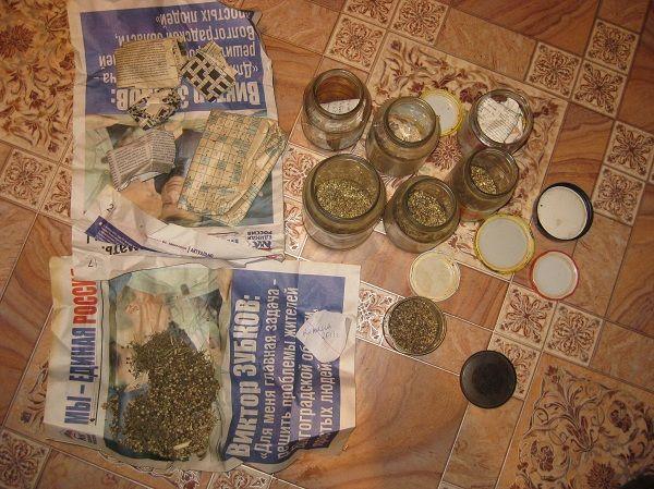 Безработный камышанин вместе с цветами выращивал марихуану