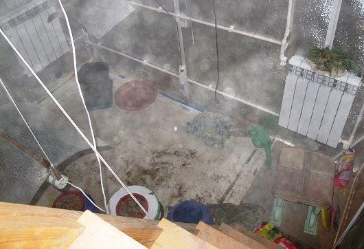 Задержанный наркополицией волгоградец попытался сжечь выращенную коноплю