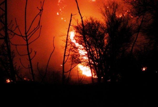 Спасатели МЧС локализуют ландшафтный пожар на севере Волгограда