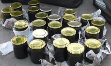 Волгоградец незаконно распродал 12 литров икры краснокнижных осетровых