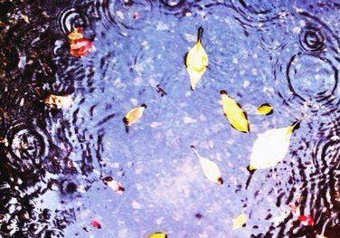 Под Волгоградом прохожие нашли погибшего ребенка в луже талой воды