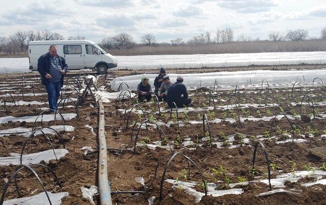 Под Волгоградом обнаружили 56 «Нелегальных Мигрантов 2015»