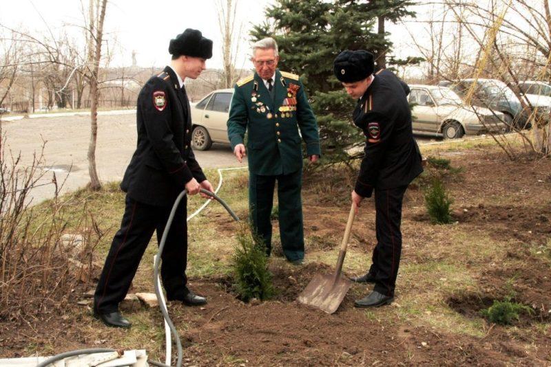 Врачи, ветераны и студенты высадили в Волгограде сад Победы