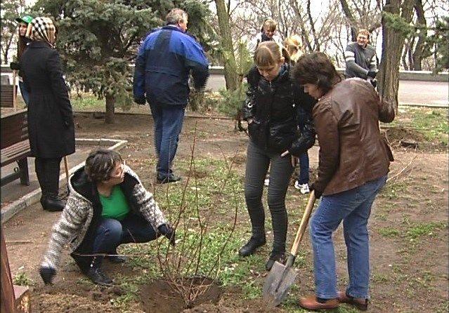 18 апреля в Волгограде прошел массовый общегородской субботник