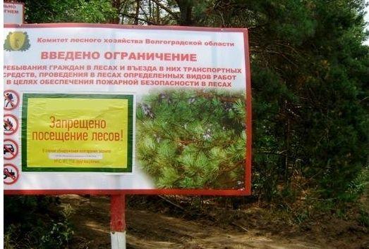 В Волгоградской области продолжает действовать режим ограничения посещения лесов