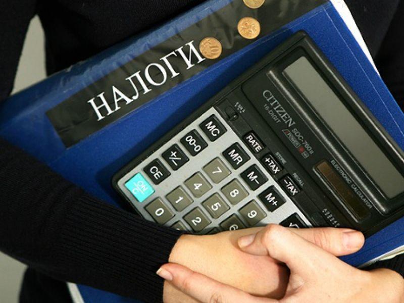 «Стричь уже некого, шерсти не осталось». Налоговая Волгоградской области резко сократила доначисления
