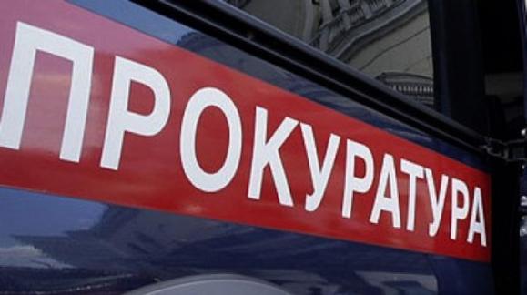 Вице-мэра Великого Новгорода задержали за распространение в Интернете детского порно
