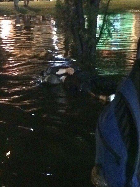 В Краснодаре подростка убило ударом тока после потопа на улице