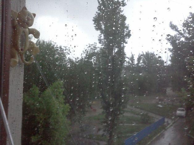 В Волгоградскую область на сутки придут дожди с грозами