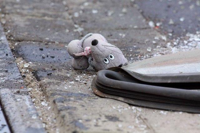 Под Волгоградом в ДТП пострадал 8-месячный ребенок