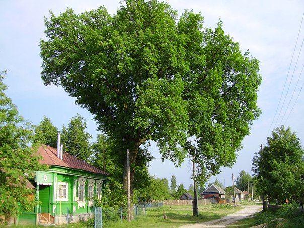 В Волгоградской области дан старт сельхозпереписи