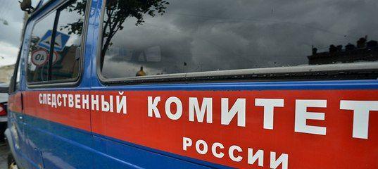 Рецидивиста из Новониколаевского района приговорили к 19 годам колонии за убийство сожительницы и друга