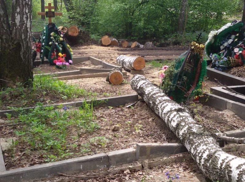 С надгробий на протяжении нескольких дней не могут убрать упавшее дерево