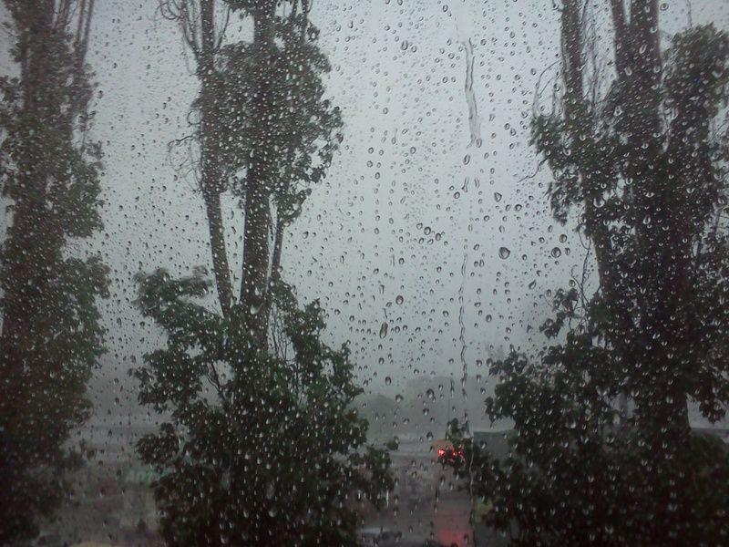 В Волгоград пришли дожди