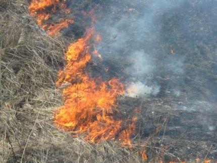 МЧС: В регионе объявлено экстренное предупреждение из-за жары