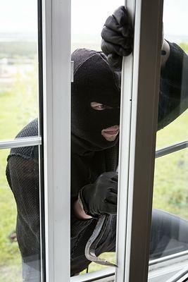 Грабитель выкинул из окна квартиры собаку