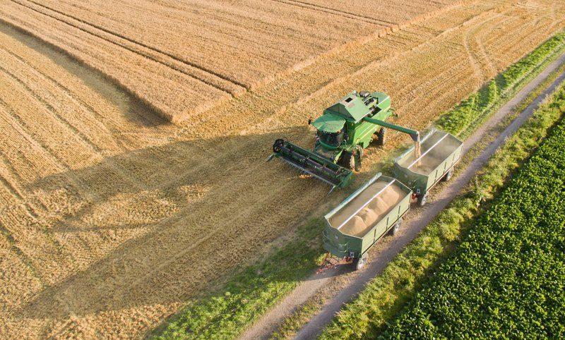 Волгоградские фермеры намолотили более 4 миллионов тонн зерна