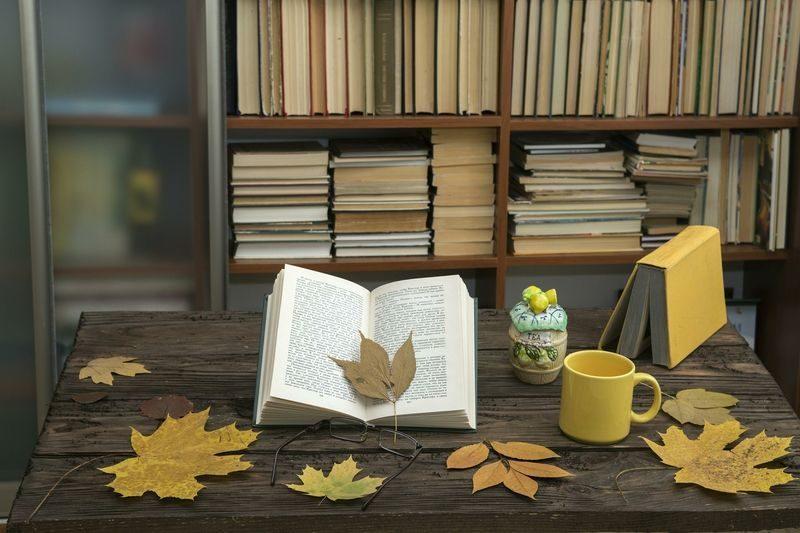 В Волгограде откроется литературная гостиная