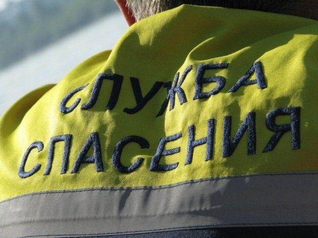 В Волгограде спасатели помогли застрявшему на дереве ребенку