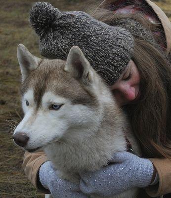 В Волжском установят памятник собаке-поводырю