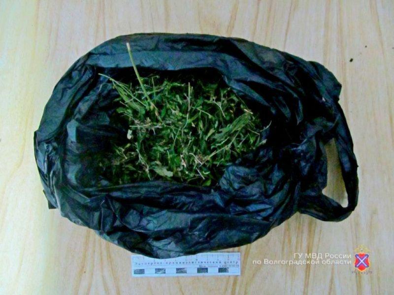 Хранил марихуану – получи срок