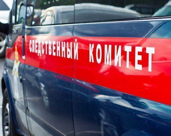 Предполагаемый убийца московской школьницы покончил с собой