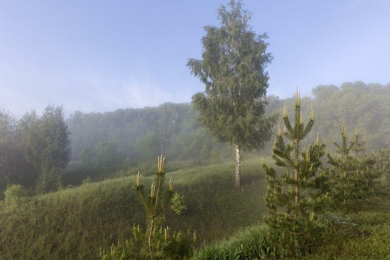 Два жителя области самовольно заняли территорию природного парка