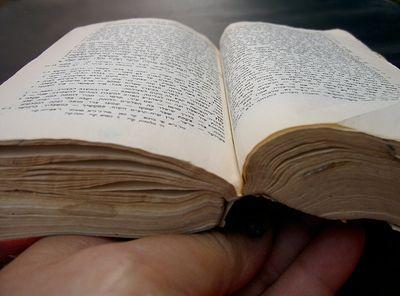 Во Владивостоке уничтожили десятки экземпляров Библии и Евангелие