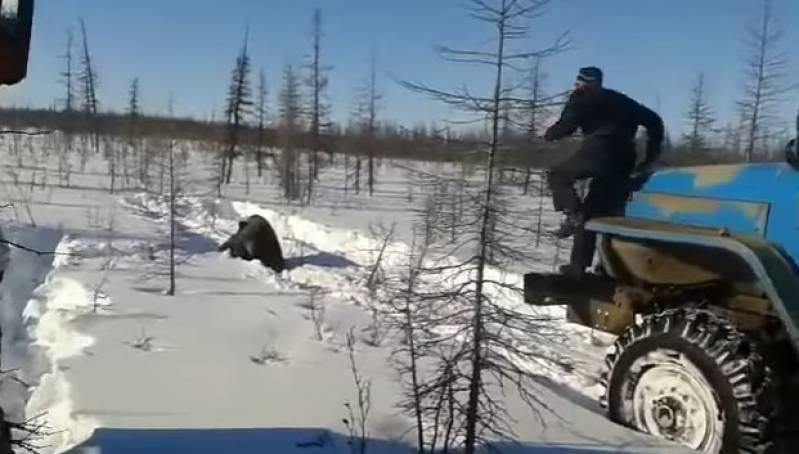 СК возбудил уголовное дело по факту издевательства над медведем в Якутии