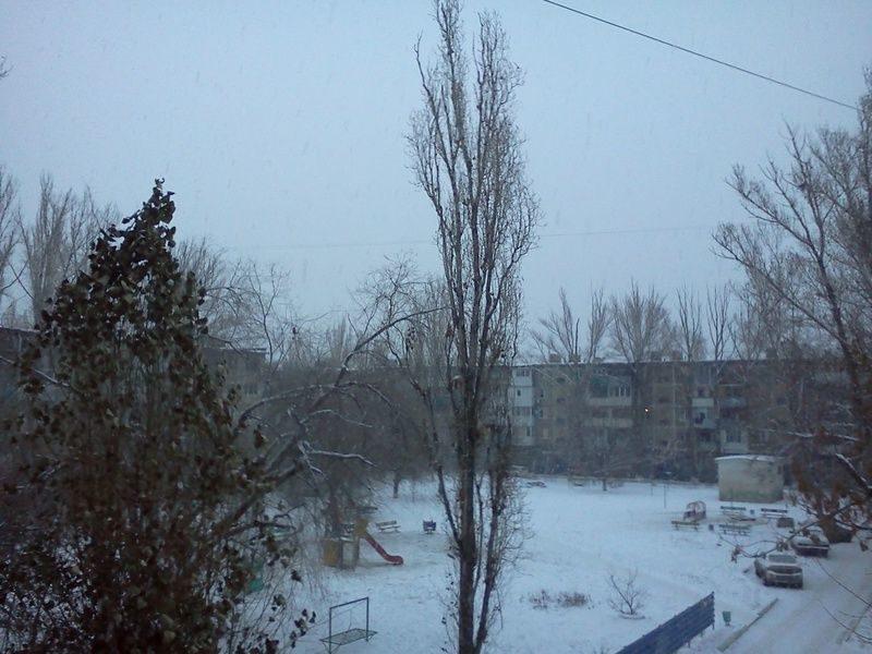 В Волгограде сохранится сильный ветер и снегопад