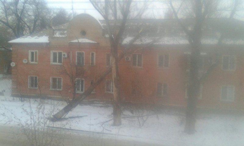 В Волгограде ветер валит деревья, столбы и строительные краны